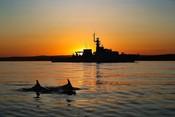 Maritime - Tamar at sea